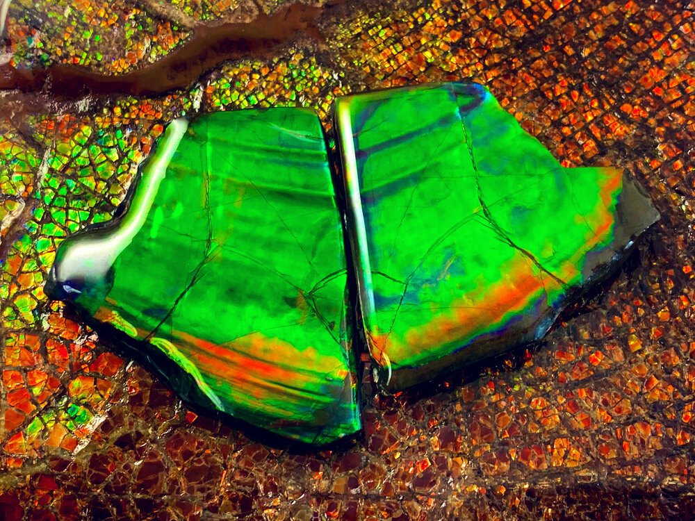 Ammolite Meanings, Properties and Uses