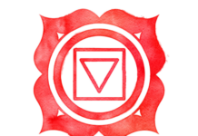 Root Chakra Crystal Stones List, Meanings and Uses